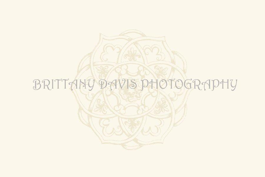 Brittany Davis Photography