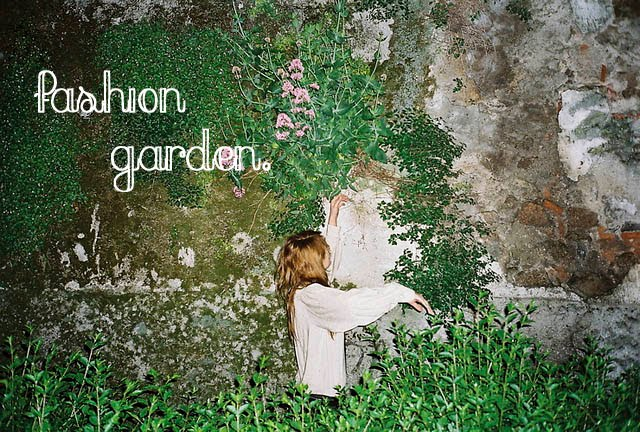 fashion garden