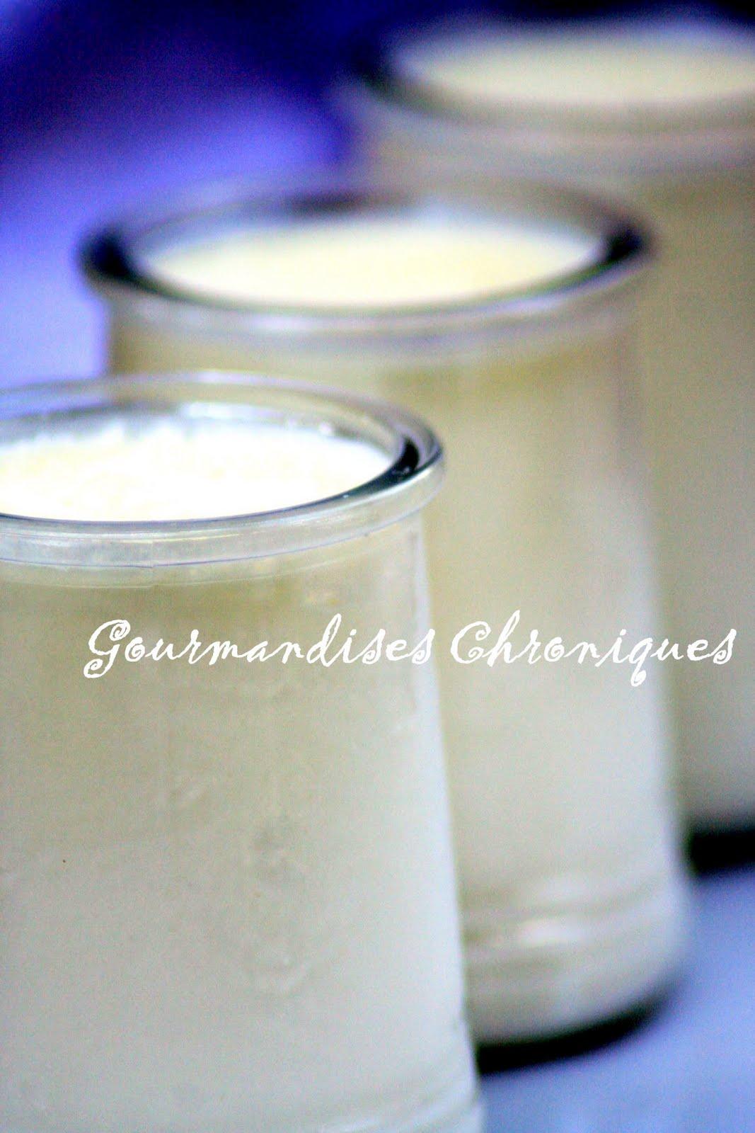 Gourmandises chroniques b du yaourt maison au four for 1001 trucs maison