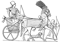 Biga egiziana