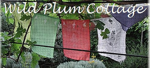 Wild Plum Cottage
