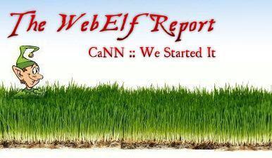 The WebElf Report logo