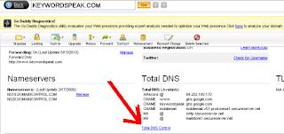 godaddy.com custom domain name blogger.com