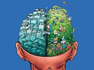 Tahukah Anda Perbedaan Otak Kiri dan Otak Kanan?