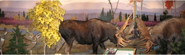 Cabela's Big Game Mural