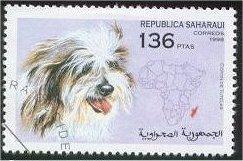 Coton de Tulear Stamp