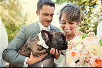 bride and her bouquet next to groom holding a dog