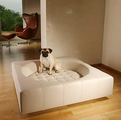 elegant Dog Bed