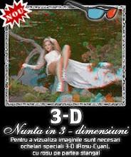 Nunta 3D