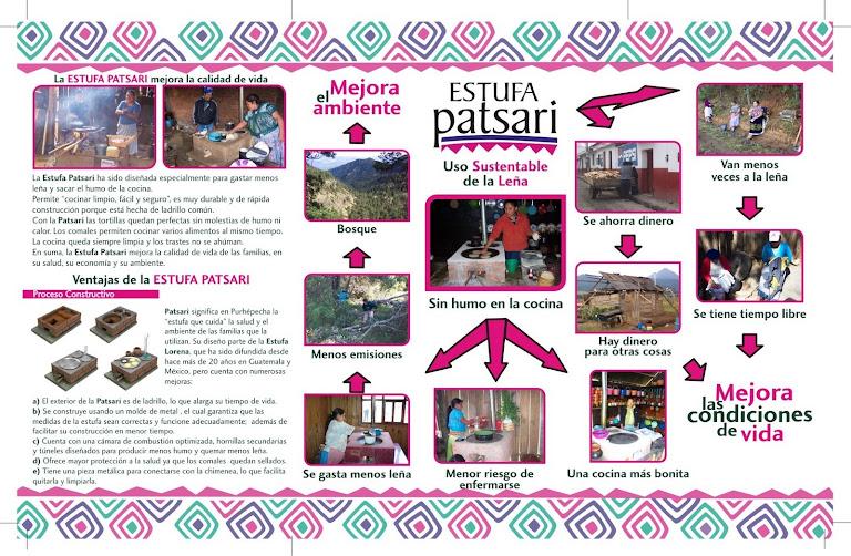 Enfoque del Proyecto Patsari
