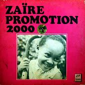 ZAIRE PROMOTION 2000
