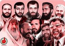 My Mujahedeen