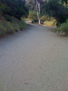 Runyon Canyon Trail East- Unpaved