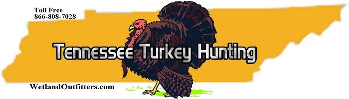 Tennessee Turkey Hunting