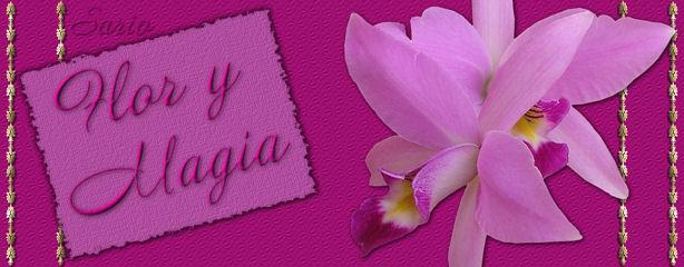 Flor y Magia