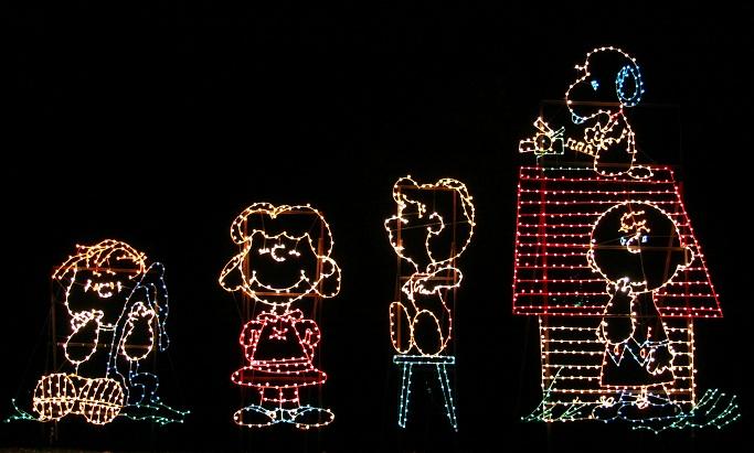 Wheeling Christmas Lights