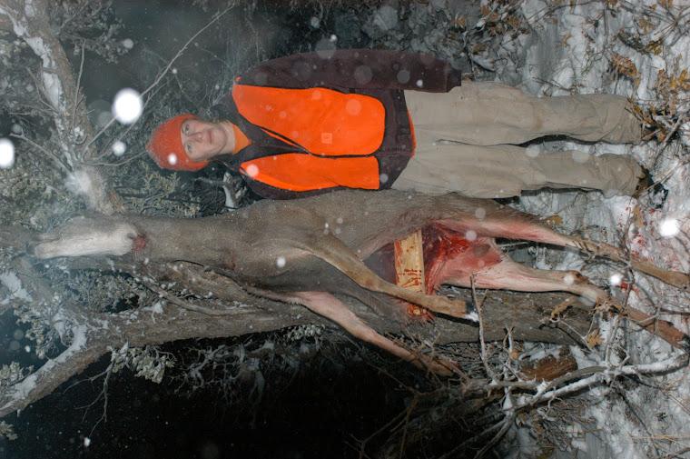 Deer 2007