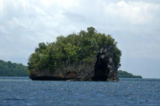 Taman Laut di Raja Ampat Papua