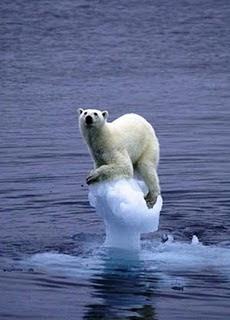 GLOBAL WARMING...!