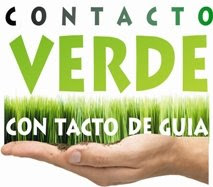 LA CANCIN VA....SLO RECUERDA QUE EL MOTIVO ES VERDE, ECOLGICO!