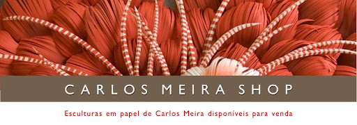 carlos meira store