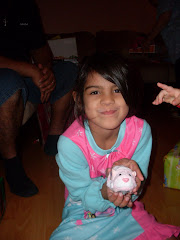 ZHU ZHU PET JILLY( THE PINK ONE)