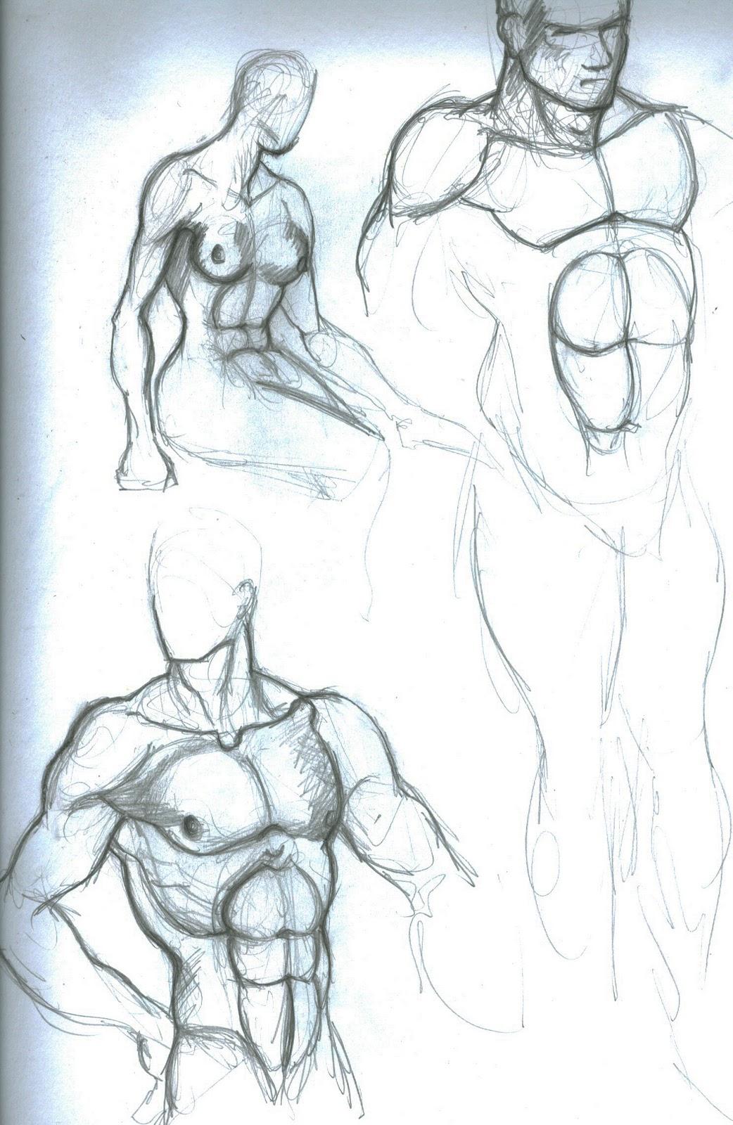 Graphyx Medley: Anatomy Studies