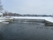 Fowler Lake Dam