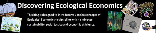 Discovering ecological economics