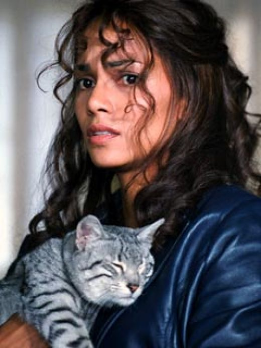 halle berry catwoman makeup. halle berry catwoman pictures.