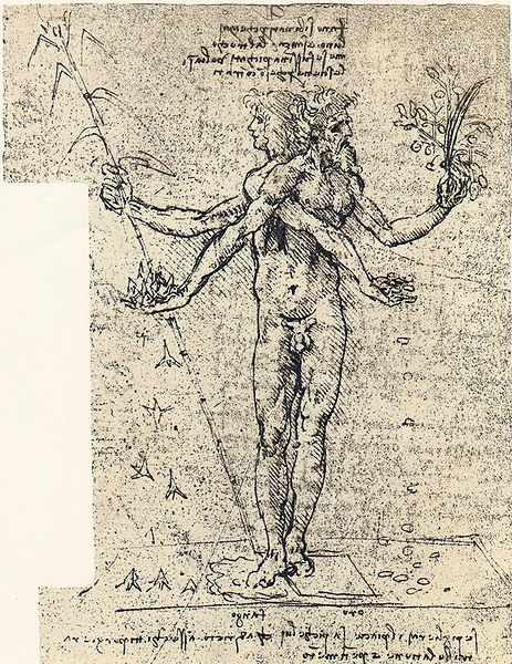 A drawing of Salai in fancy-dress costume by Leonardo da Vinci