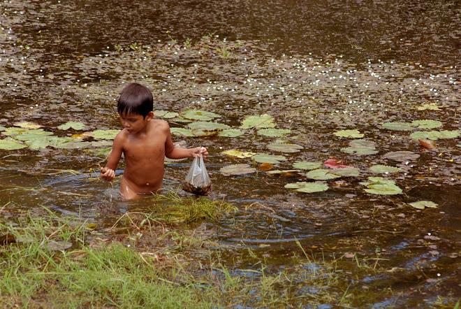 Niño buscando caracoles de agua
