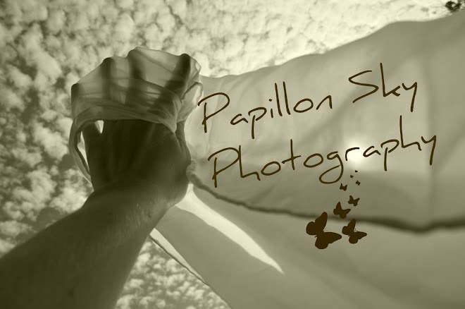 Papillon Sky Photography
