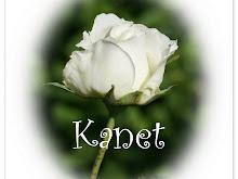 El aroma de una rosa me da vivir y un sentimiento que hace mi corazón latir.