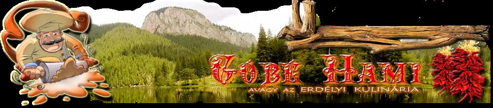 Góbé Hami, avagy az erdélyi kulinária