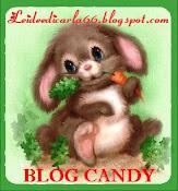 Blog Candy di Carla66,ho vinto!!!!