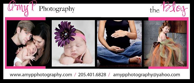 Amy P Photography