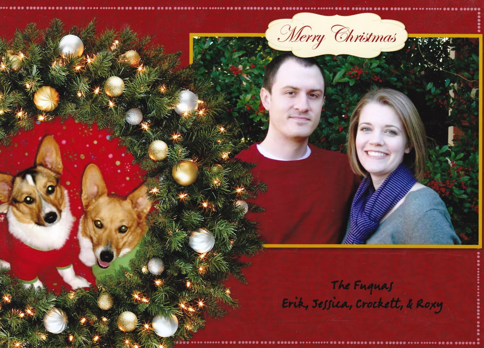 Fuquasophy: Free Shutterfly Christmas Cards
