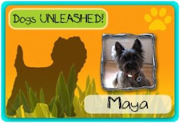 Dogs UNLEASHED! Membership Card