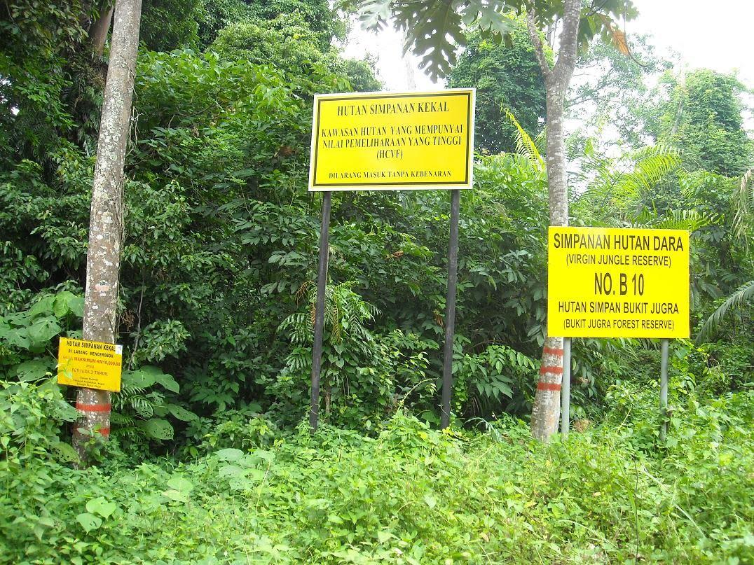Gambar hutan simpan kekal bukit jugra