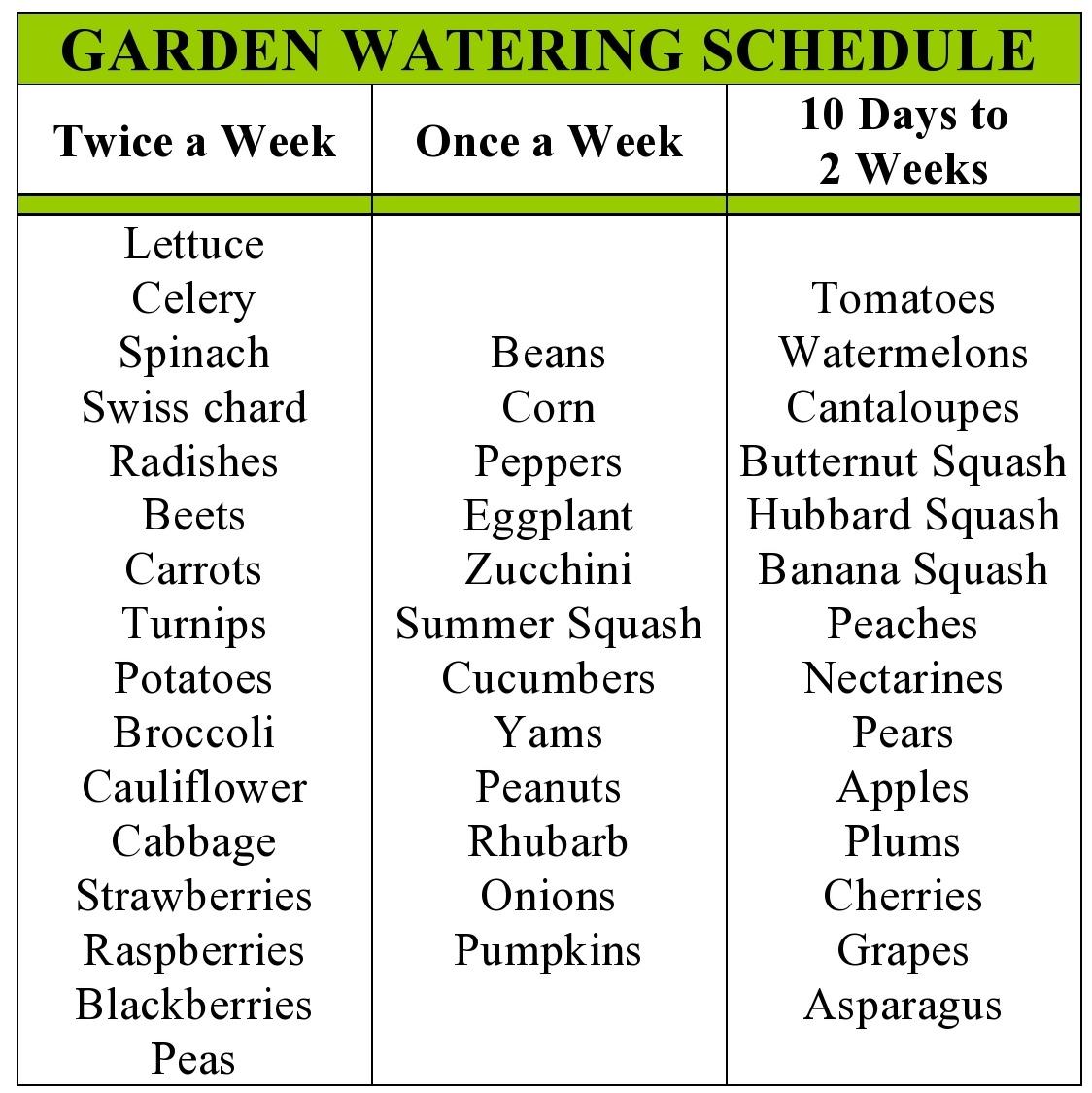 My family prepared garden watering schedule - How often should you water your garden ...