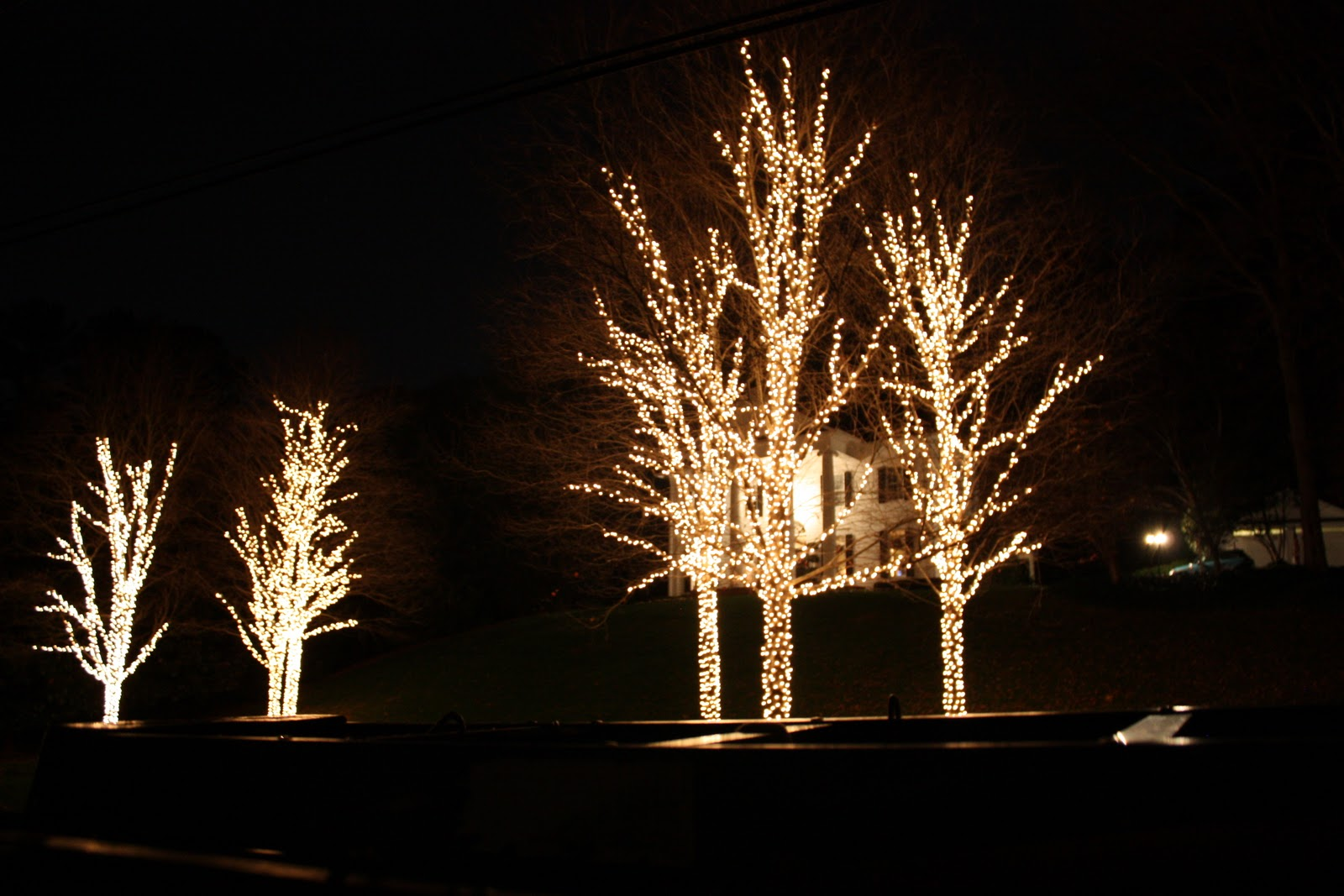 How Many Led Lights For Christmas Trees