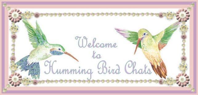 Humming Bird Chats