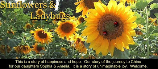 Sunflowers and Ladybugs