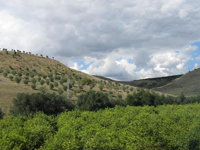 Andaluzja przez szybę