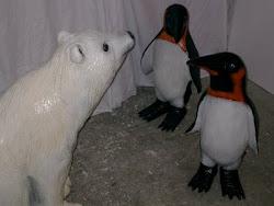 Oso y Pingüinos