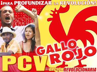 PROFUNDIZAR LA REVOLUCIÓN ES EL CAMINO, PLANTEA EL PARTIDO COMUNISTA DE VENEZUELA (PCV)