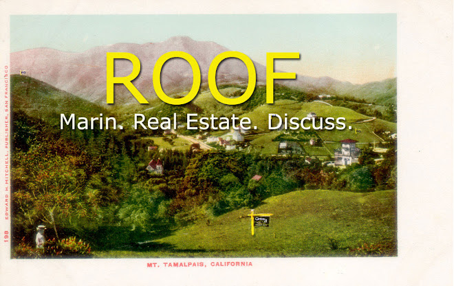 Roof Magazine