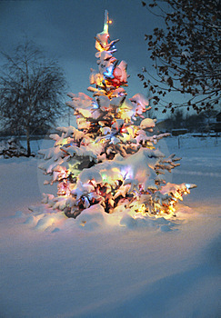 Christmas tree in snow with colored lights for Pinterest.