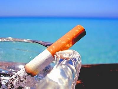bahaya, merokok, keburukan, akibat, kandungan rokok, sel darah merah babi, bahan kimia, kajian, saintis, pakar akademik, hasil, jenama rokok